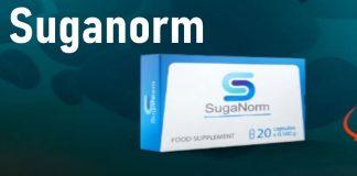 SugaNorm recensione