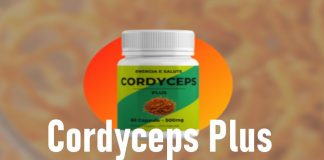 cordyceps recensione